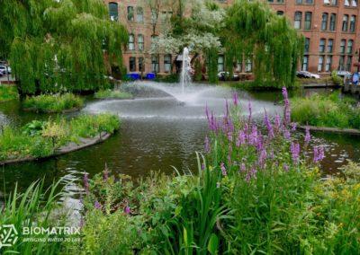 Biomatrix Water Technology Case study