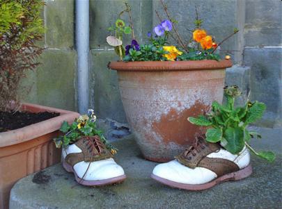Oat Shoes Case study